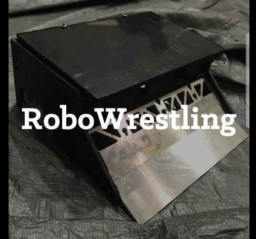 RoboWrestling